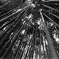 072014img001_a