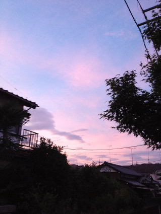Ipone_20130830a