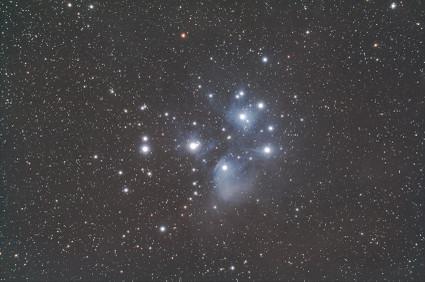 Img_0014196_stella_1a_1